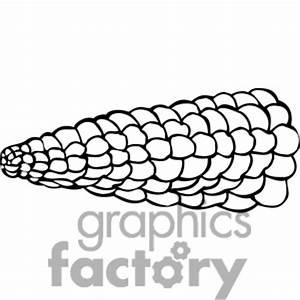 Corn Outline Clip Art (49+)