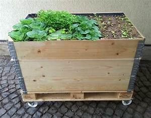 Hochbeet Mit Stauraum : 25 best ideas about hochbeet kaufen on pinterest schrebergarten kaufen pflanzen kaufen and ~ Yasmunasinghe.com Haus und Dekorationen