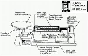 My Weigh Triple Beam Balance