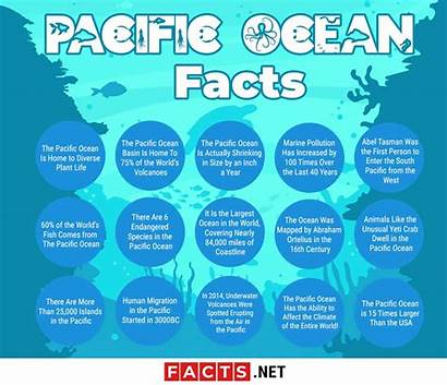 Facts Ocean Pacific Nature