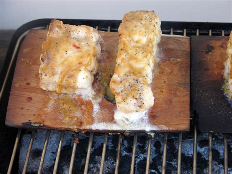 grouper glazed planked miso cedar maple recipes grill recipe twice basting glaze firm brush covered until minutes touch fish another