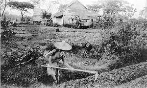 This photo was uploaded by tangawizi. Chinese farmer 1900 ...