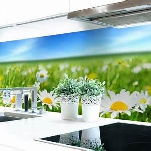 Küchenrückwand Hart Pvc : k chenr ckwand blumenwiese premium hart pvc 0 4 mm selbstklebend direkt auf die fliesen ~ Orissabook.com Haus und Dekorationen