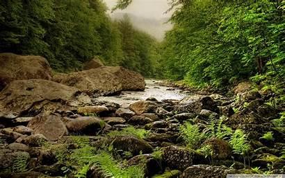 Nature Scenes Wallpapers 4k Windows Desktop Wide