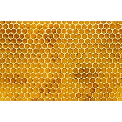 Honeycomb Texture Wallpaper MuralMurals