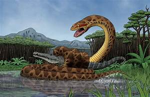 Titanoboa - Facts and Pictures