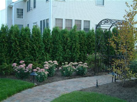 privacy planting small yard regulation fence setback law creates small side yard