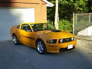 2007 Ford Mustang - Pictures - CarGurus   2007 ford mustang, Ford mustang, Ford mustang gt