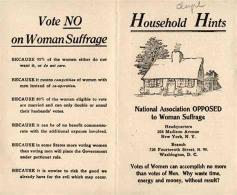 vote   womens suffrage bizarre reasons