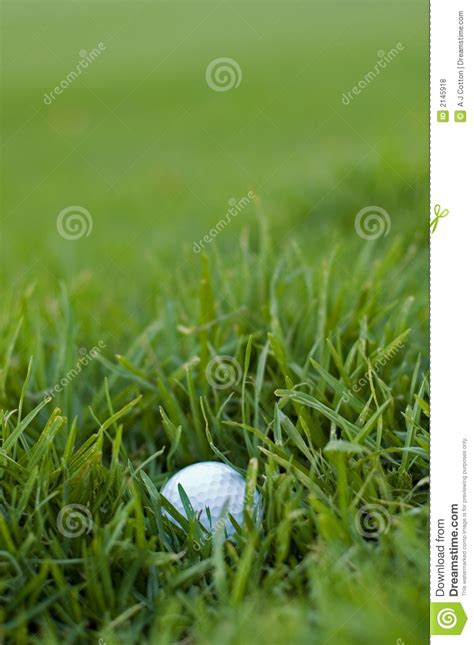 bad golf ball lie royalty  stock  image