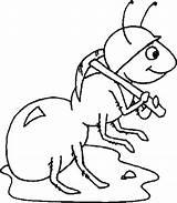 Coloring Ant Ants Anteater Worker Helmet Wearing Atom Getdrawings Getcolorings Printable sketch template