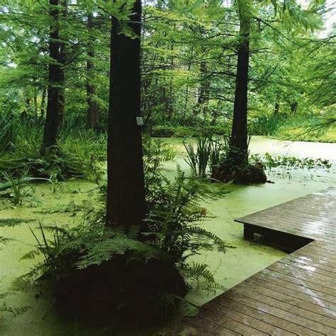 Botanischer Garten Bochum by Botanischer Garten Der Ruhr Universit 228 T Bochum Freizeitcafe