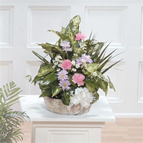 fresh cut flowers dish garden sparr s plymouth