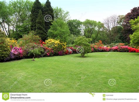 bright bush for landscaping beautiful manicured lawn in a summer garden stock image image 32424569