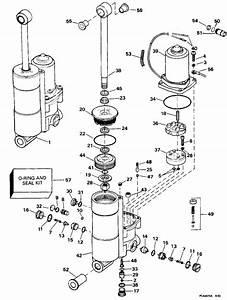 Evinrude Wiring Schematics Within Diagram Wiring And Engine