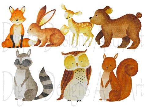 Watercolor Forest Animals Illustrations Creative Market