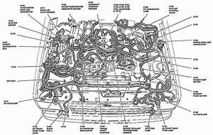 33 2002 Ford Explorer Cooling System Diagram