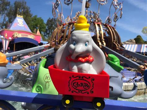 PHOTOS: New Casey Jr. Popcorn Bucket and Dumbo Sipper Come ...