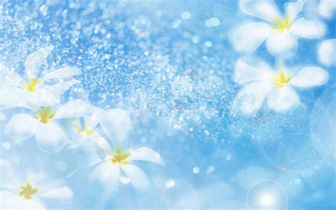 Beautiful Animated Flowers Wallpapers - most beautiful flower wallpapers sky blue wallpaper