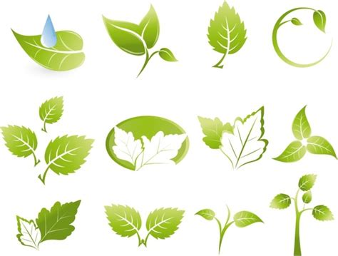 leaf vector ai free download