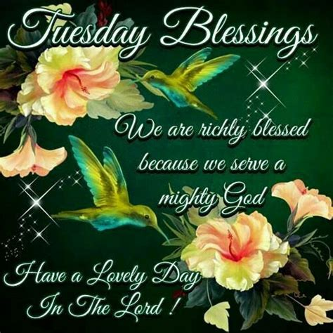 tuesday morning salt l 123 best images about tuesday blessings on pinterest