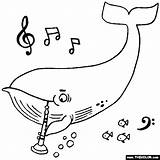 Coloring Oboe Whale Playing sketch template