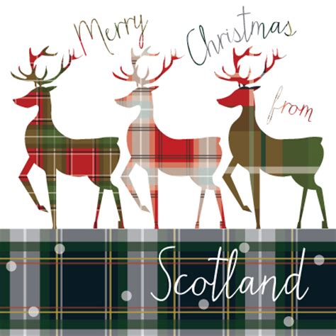 tartan stags from scotland christmas card