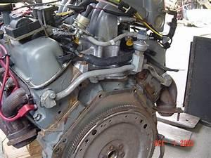 U0026 39 88 Bronco 5 8l 351 Smog Pump Tubes Leaking