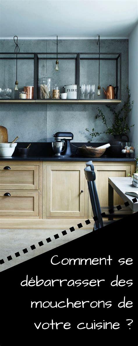 comment tuer les moucherons dans la cuisine vous avez des moucherons dans votre cuisine voici la