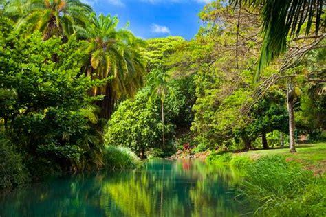 kauai botanical gardens national tropical botanical garden hawaii