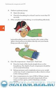 First Aid Reference Guide Fourth Edition