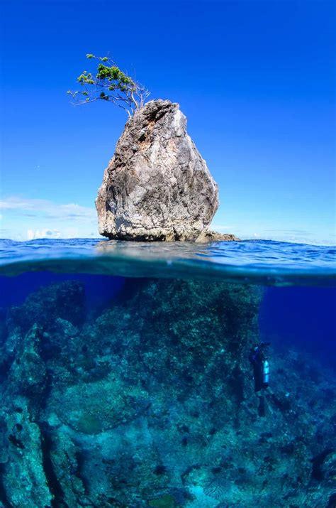 Underwater Photography Tutorials For All Underwater