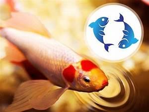 Sternzeichen Fisch Stier : sternzeichen fische eigenschaften charakter mehr bis ~ Markanthonyermac.com Haus und Dekorationen