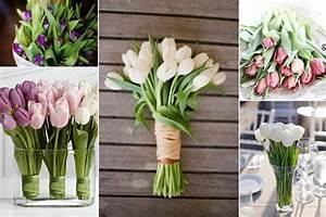 Tulpen Im Glas Ohne Erde : tulpen f r die hochzeit ~ Frokenaadalensverden.com Haus und Dekorationen