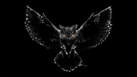 wallpaper nightmare owl black scary hd creative