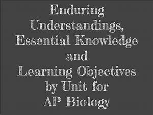 Biology By The Math Mom  Study Guides By Unit For Ap Biology