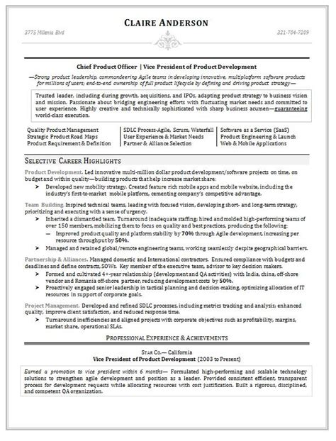 product design resumes vice president of product development resume career