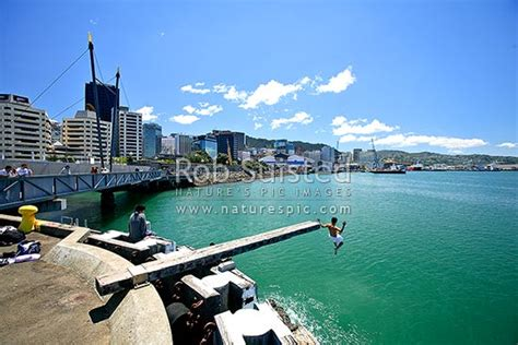 wellington waterfront promenade  diver