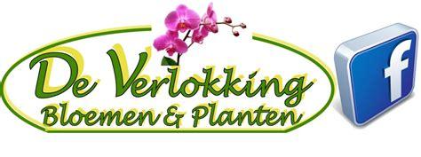 bloemen winkel starten de verlokking bloemen en planten