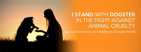 lets  orange   prevent animal cruelty