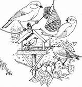 Coloring Winter Pages Bird Vogels Craft Plank Kleurplaat Birds Parchment Googlom Hľadať Template sketch template