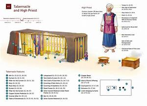 Diagram  The Tabernacle And High Priest Moses Described