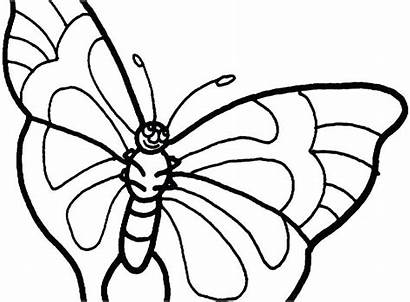 Coloring Pages Butterfly Printable Getcolorings
