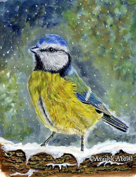 peintures 224 la gouache d oiseaux peintre animalier portraitiste