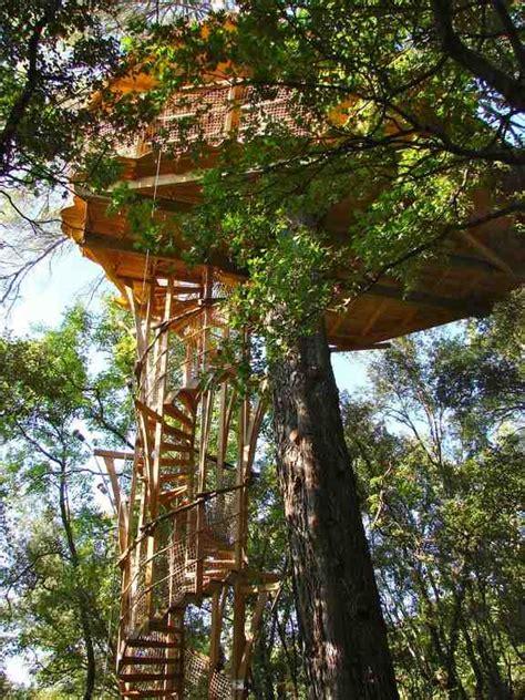 chambre d hote dans les arbres les cab 39 ânes du varon cabanes dans les arbres chambre