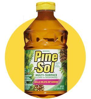 pine sol on wood floors 10 best ideas about pine sol on the porch