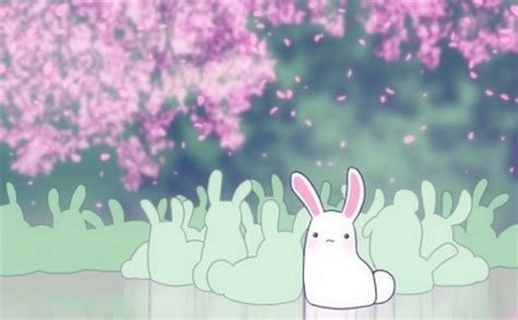Anime Bunny Wallpaper - bunny wallpaper other abstract background