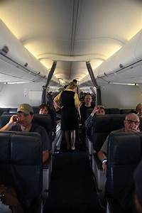 File:FEMA - 37749 - Residents inside an airplane being ...