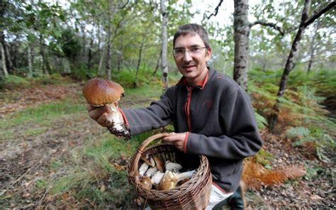 cuisiner du lievre landes il scrute à la loupe la pousse des cèpes dans sa