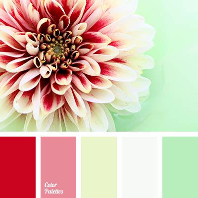 green  red color palette ideas